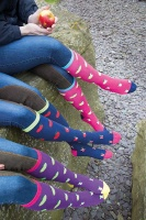 Apple Design Ladies Knee Socks from Bridleway Equestrian
